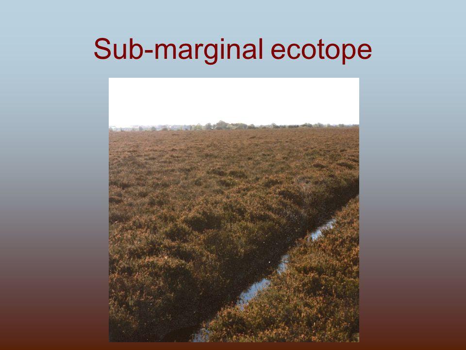 Sub-marginal ecotope