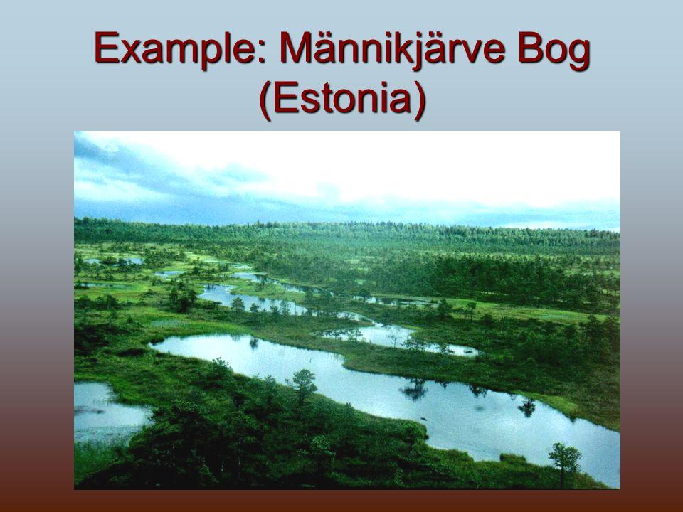 Example: Männikjärve Bog (Estonia)