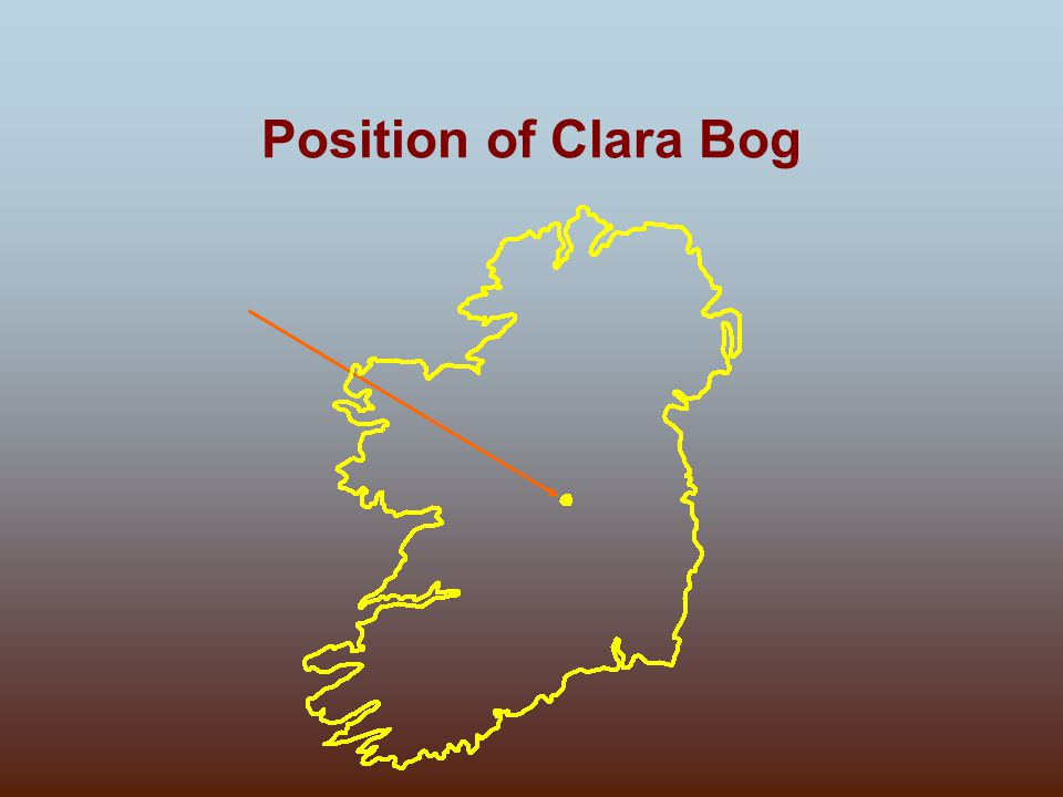 Position of Clara Bog