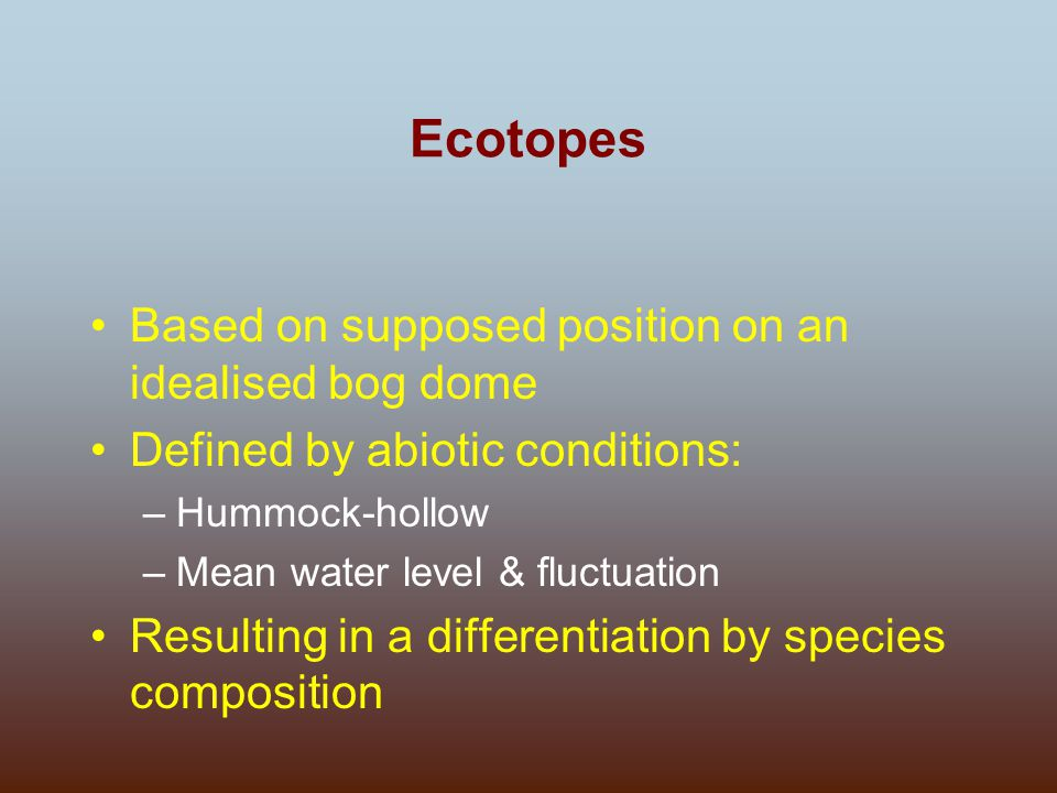 Ecotopes Based on supposed position on an idealised bog dome Defined by abiotic conditions: –Hummock-hollow –Mean water level & fluctuation Resulting