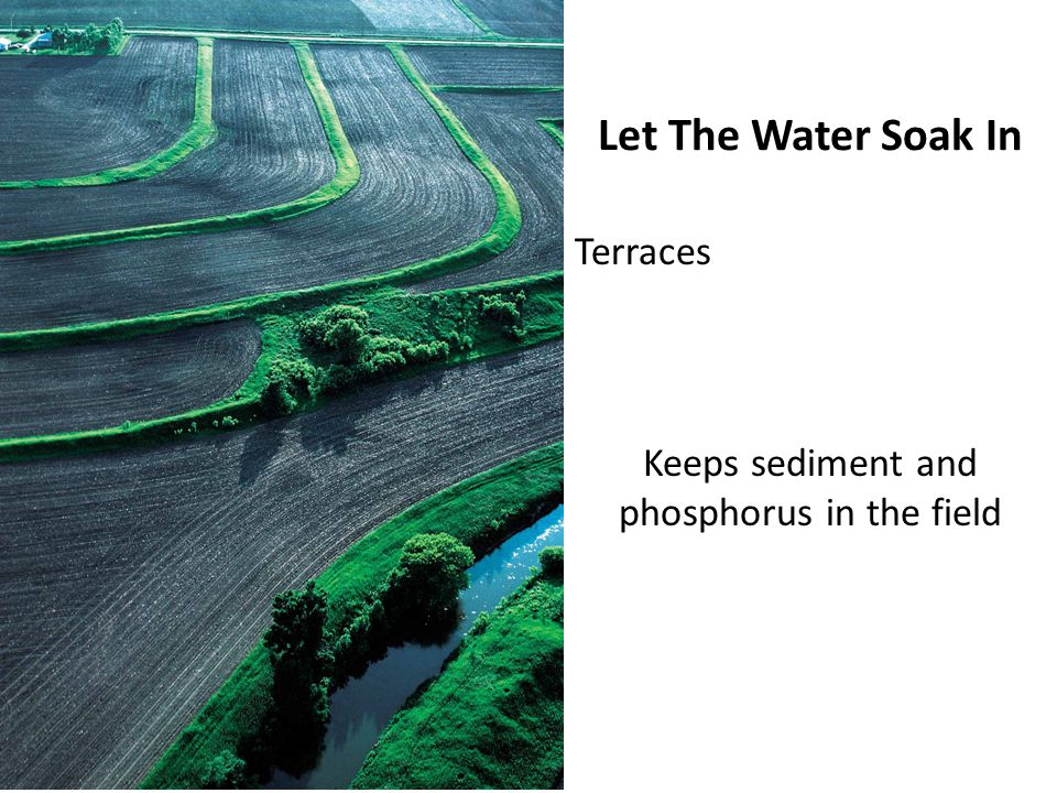 Let The Water Soak In Terraces Keeps sediment and phosphorus in the field