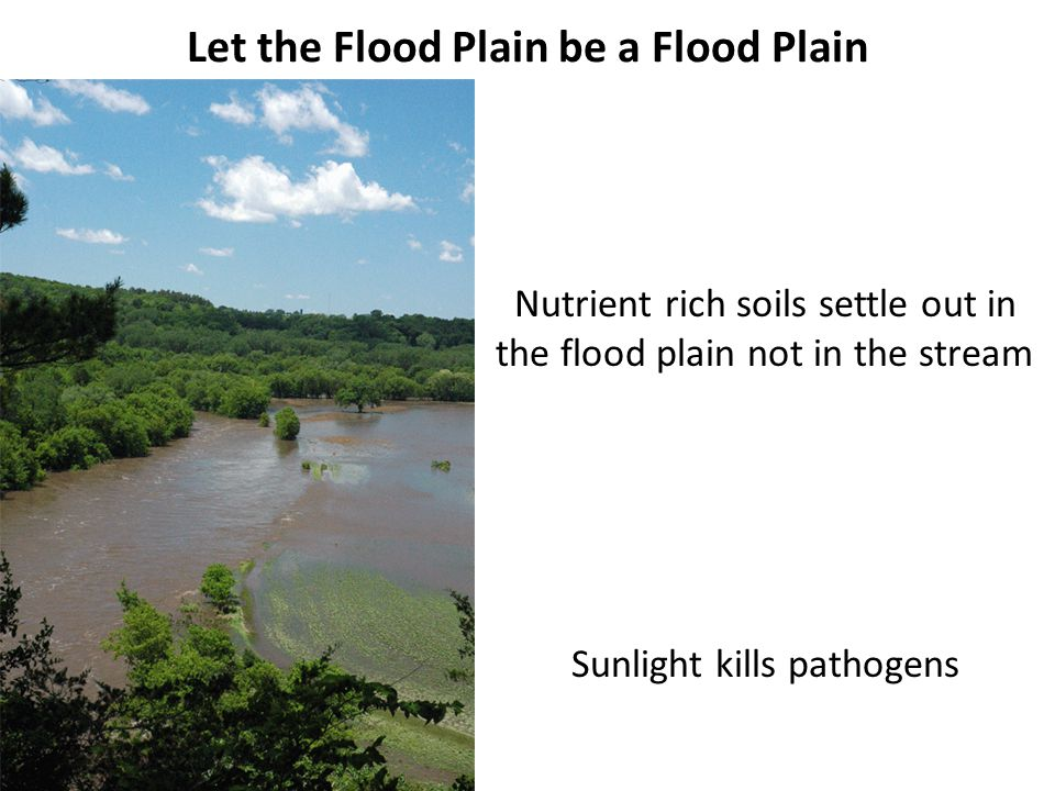 Let the Flood Plain be a Flood Plain Nutrient rich soils settle out in the flood plain not in the stream Sunlight kills pathogens