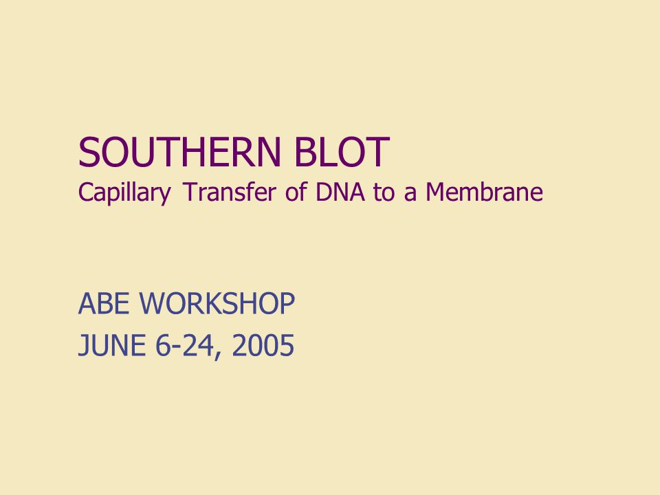 SOUTHERN BLOT Capillary Transfer of DNA to a Membrane ABE WORKSHOP JUNE 6-24, 2005