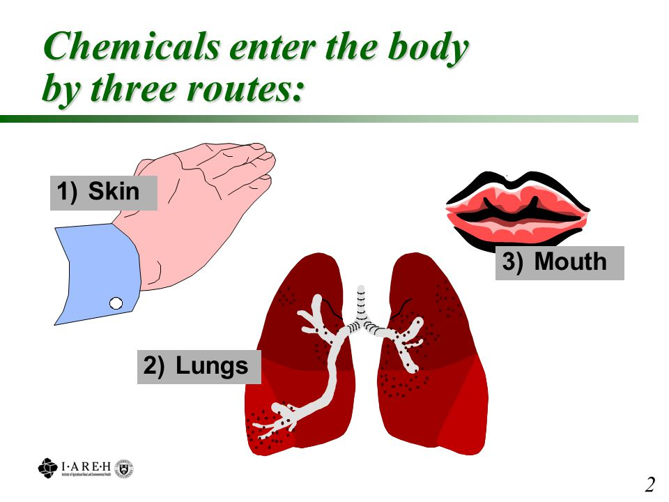 Chemicals enter the body by three routes: 2) Lungs 1) Skin 3) Mouth 2