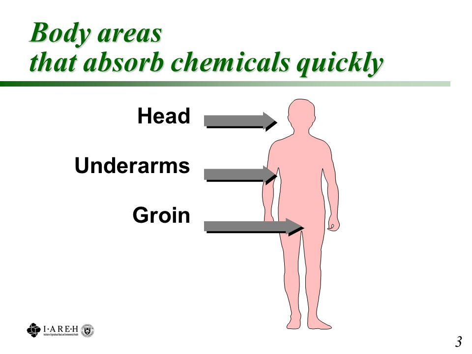 Body areas that absorb chemicals quickly Head Underarms Groin 3