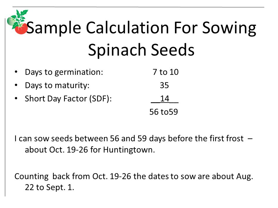 Sample Calculation For Sowing Spinach Seeds Days to germination: 7 to 10 Days to maturity: 35 Short Day Factor (SDF): __14__ 56 to59 I can sow seeds b