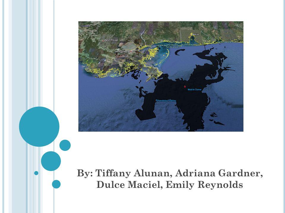 By: Tiffany Alunan, Adriana Gardner, Dulce Maciel, Emily Reynolds