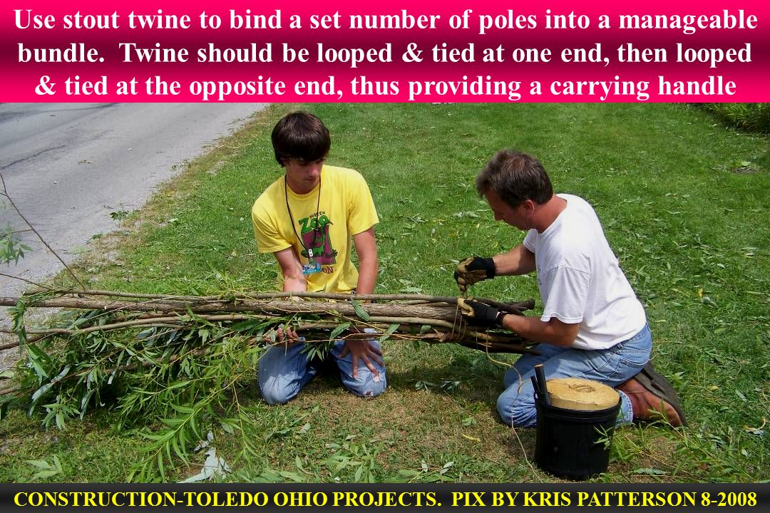 Use stout twine to bind a set number of poles into a manageable bundle.