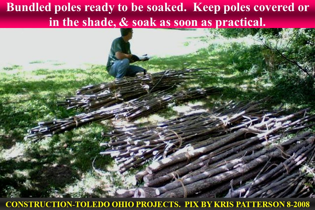 Bundled poles ready to be soaked. Keep poles covered or in the shade, & soak as soon as practical.