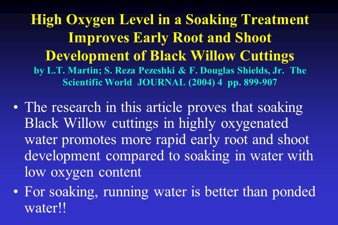 High Oxygen Level in a Soaking Treatment Improves Early Root and Shoot Development of Black Willow Cuttings by L.T.