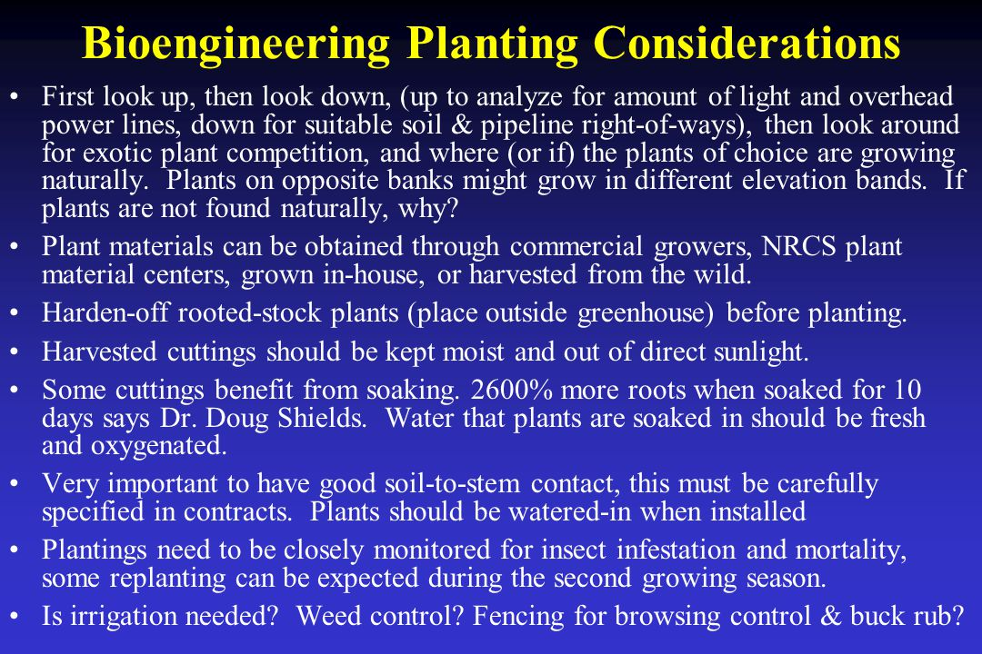 Bioengineering Planting Considerations First look up, then look down, (up to analyze for amount of light and overhead power lines, down for suitable soil & pipeline right-of-ways), then look around for exotic plant competition, and where (or if) the plants of choice are growing naturally.