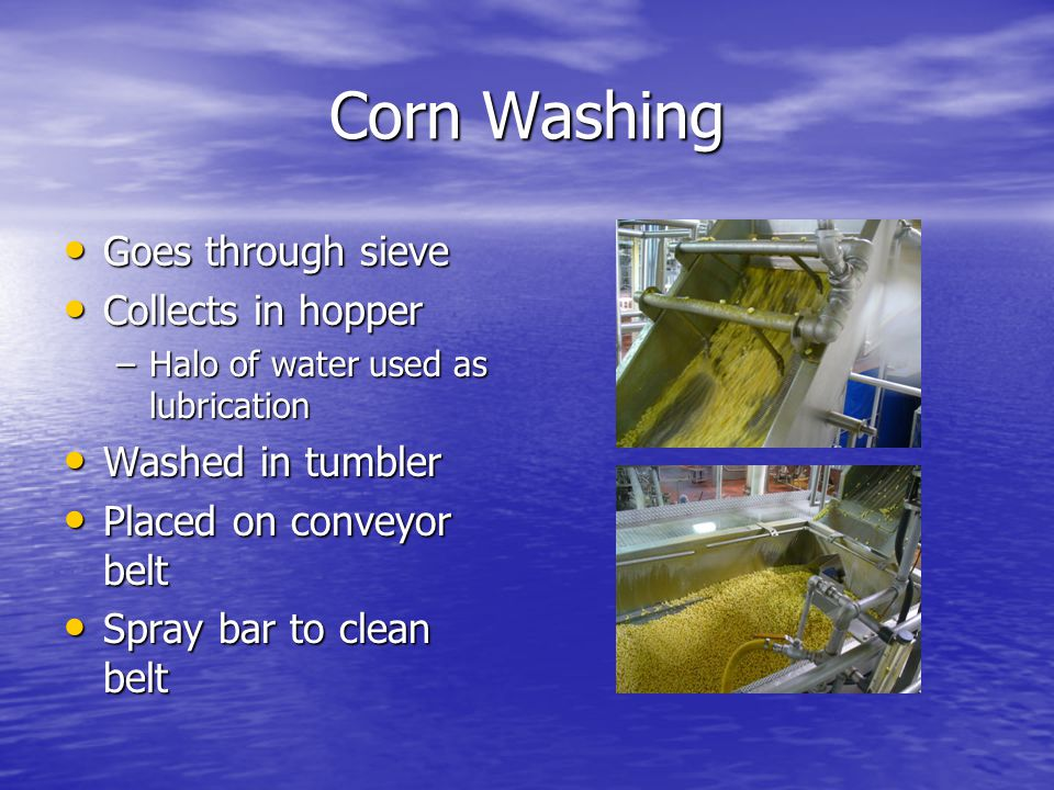 Corn Washing Goes through sieve Goes through sieve Collects in hopper Collects in hopper –Halo of water used as lubrication Washed in tumbler Washed in tumbler Placed on conveyor belt Placed on conveyor belt Spray bar to clean belt Spray bar to clean belt