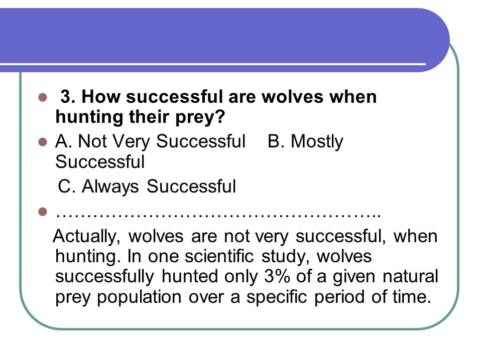 3. How successful are wolves when hunting their prey.