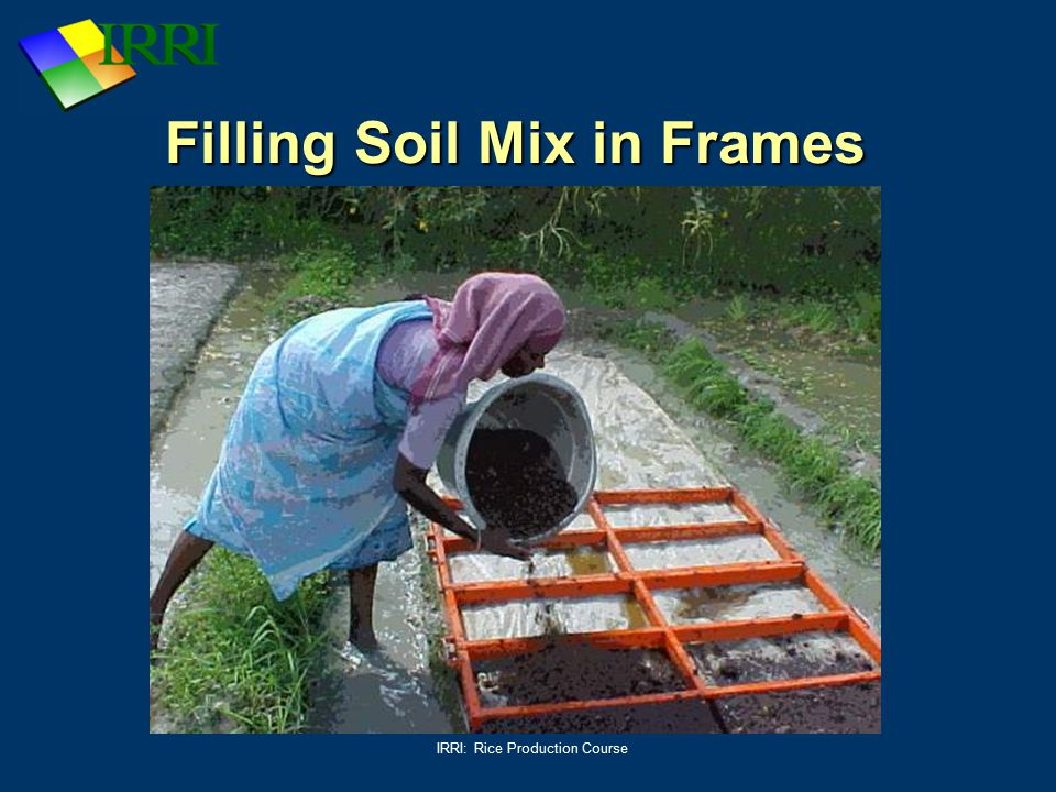 IRRI: Rice Production Course Filling Soil Mix in Frames