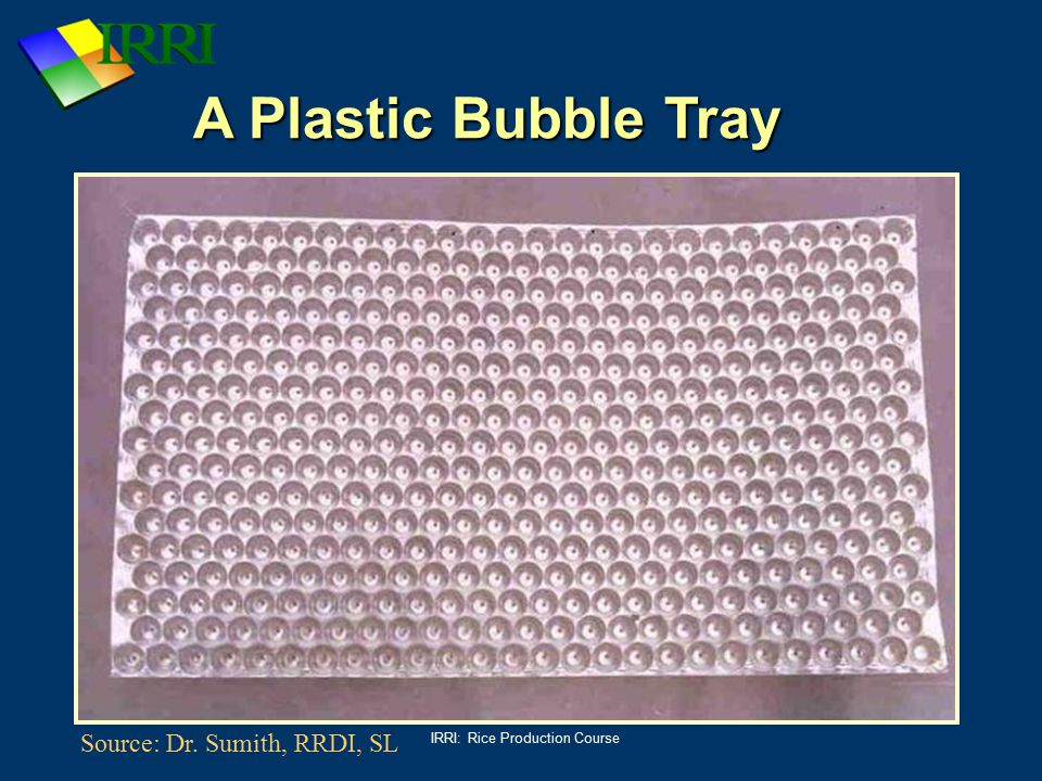 IRRI: Rice Production Course A Plastic Bubble Tray Source: Dr. Sumith, RRDI, SL