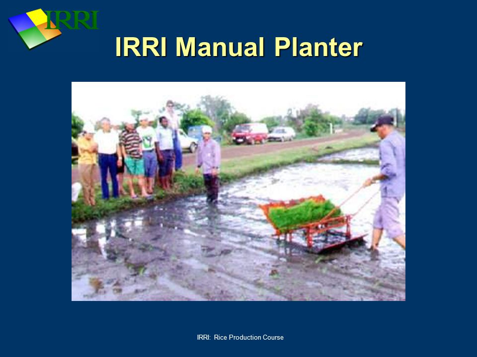 IRRI: Rice Production Course IRRI Manual Planter