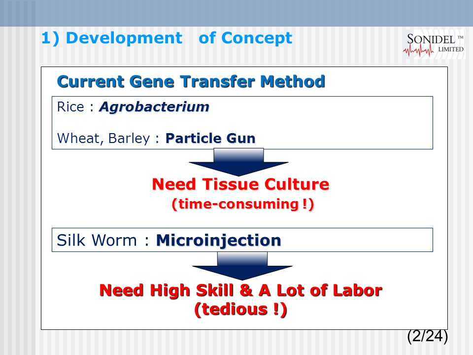 (2/24) 1) Development of Concept Agrobacterium Rice : Agrobacterium Particle Gun Wheat, Barley : Particle Gun Current Gene Transfer Method Microinjection Silk Worm : Microinjection Need Tissue Culture (time-consuming !) (time-consuming !) Need High Skill & A Lot of Labor (tedious !)