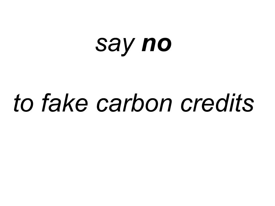 say no to fake carbon credits