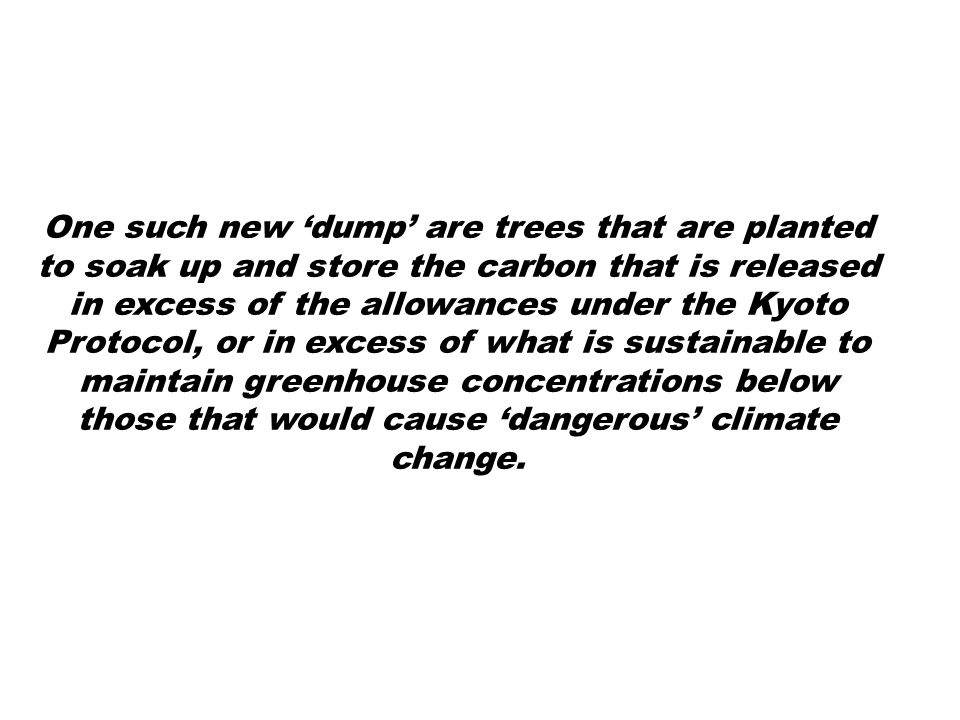 One such new 'dump' are trees that are planted to soak up and store the carbon that is released in excess of the allowances under the Kyoto Protocol, or in excess of what is sustainable to maintain greenhouse concentrations below those that would cause 'dangerous' climate change.