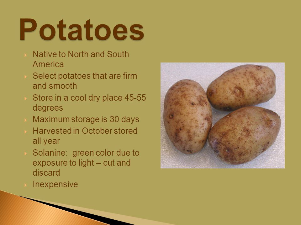  Native to North and South America  Select potatoes that are firm and smooth  Store in a cool dry place 45-55 degrees  Maximum storage is 30 days  Harvested in October stored all year  Solanine: green color due to exposure to light – cut and discard  Inexpensive