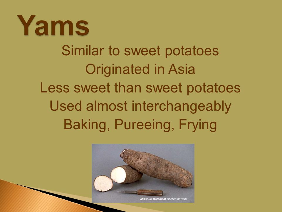 Similar to sweet potatoes Originated in Asia Less sweet than sweet potatoes Used almost interchangeably Baking, Pureeing, Frying