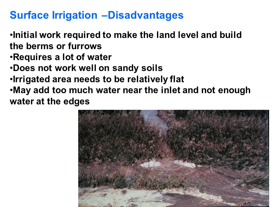 Surface Irrigation –Disadvantages Initial work required to make the land level and build the berms or furrows Requires a lot of water Does not work we