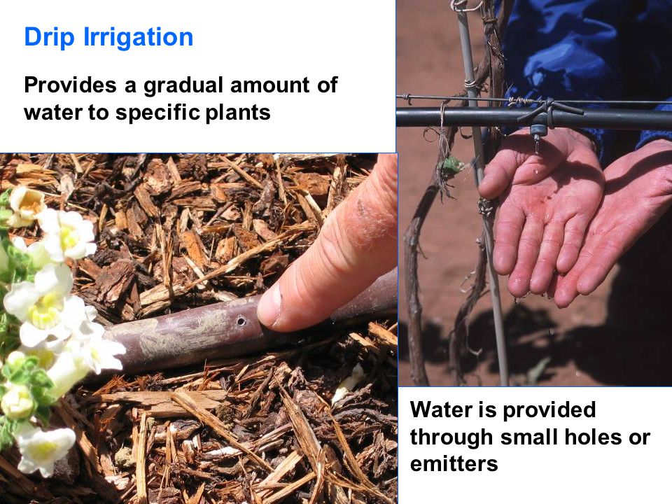 Drip Irrigation Provides a gradual amount of water to specific plants Water is provided through small holes or emitters