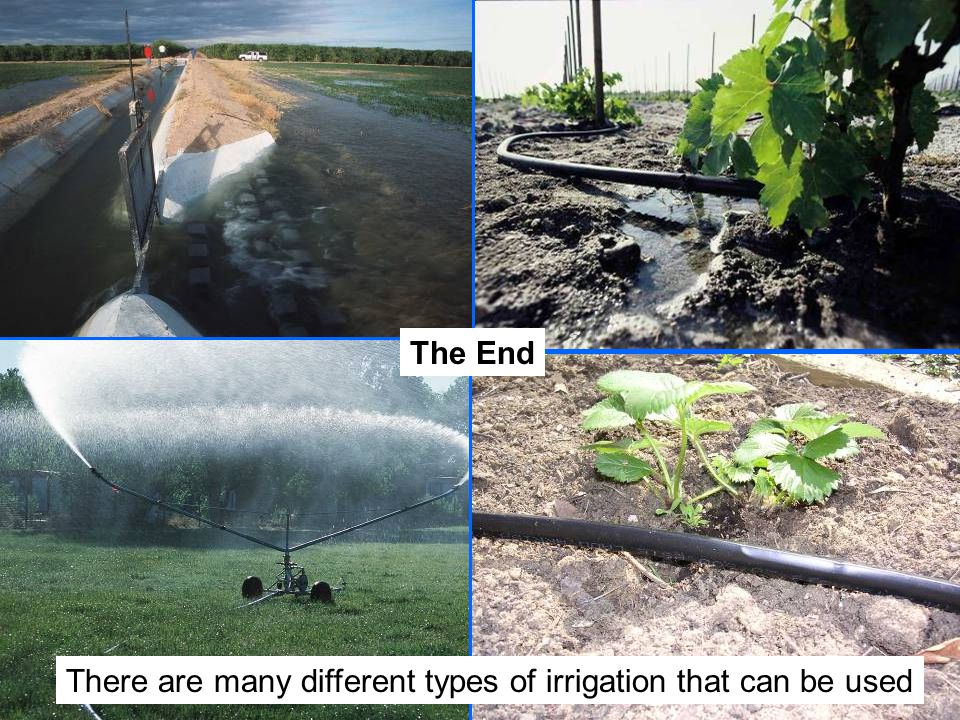 There are many different types of irrigation that can be used The End