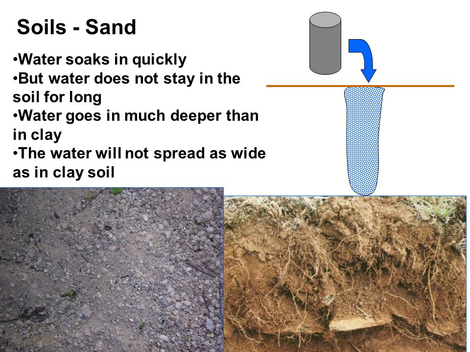 Soils - Loam Loam soil is good for plants Water soaks in at a moderate rate Water stays in the soil for a moderate amount of time