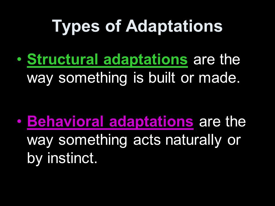 Types of Adaptations Structural adaptations are the way something is built or made. Behavioral adaptations are the way something acts naturally or by