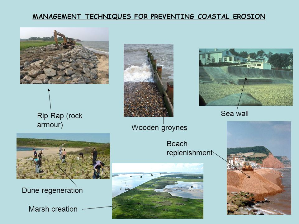 MANAGEMENT TECHNIQUES FOR PREVENTING COASTAL EROSION Beach replenishment Dune regeneration Rip Rap (rock armour) Wooden groynes Sea wall Marsh creation
