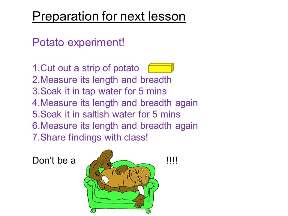 Preparation for next lesson Potato experiment.