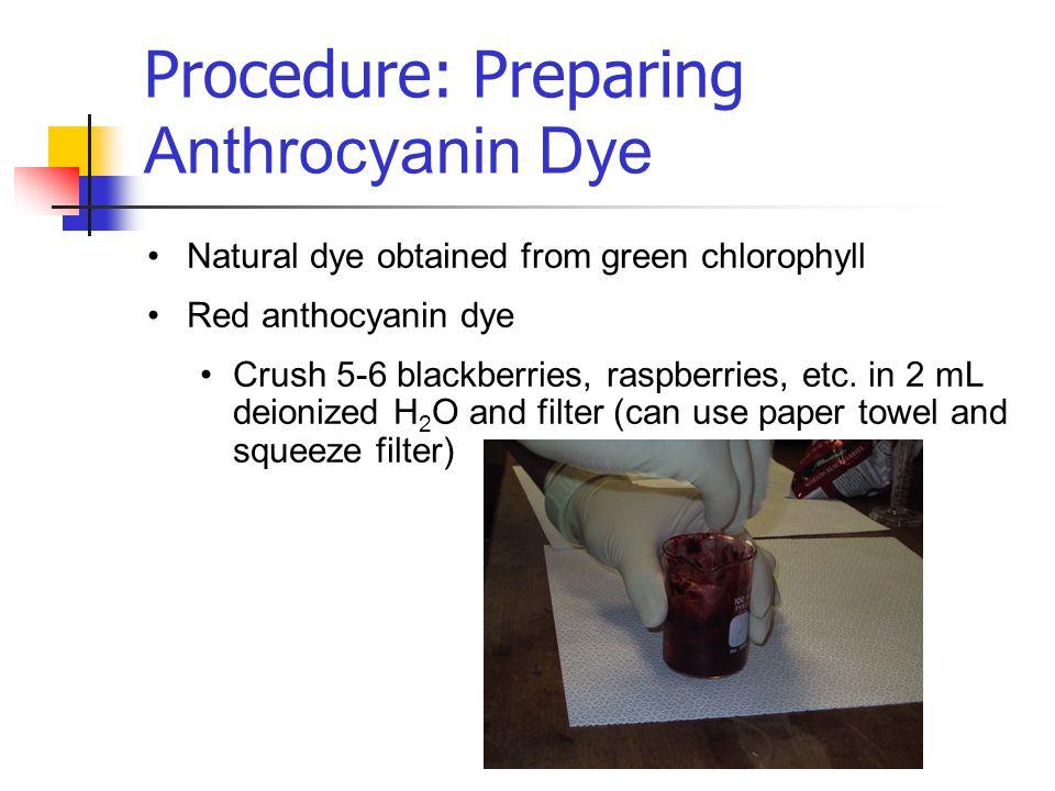 Procedure: Preparing Anthrocyanin Dye Natural dye obtained from green chlorophyll Red anthocyanin dye Crush 5-6 blackberries, raspberries, etc.