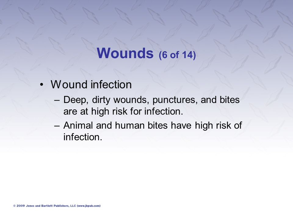 Wounds (6 of 14) Wound infection –Deep, dirty wounds, punctures, and bites are at high risk for infection. –Animal and human bites have high risk of i