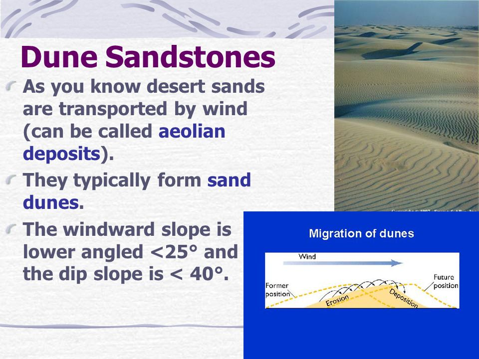 Dune Sandstones As you know desert sands are transported by wind (can be called aeolian deposits). They typically form sand dunes. The windward slope