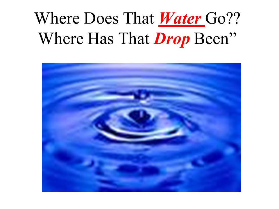 Where Does That Water Go?? Where Has That Drop Been""