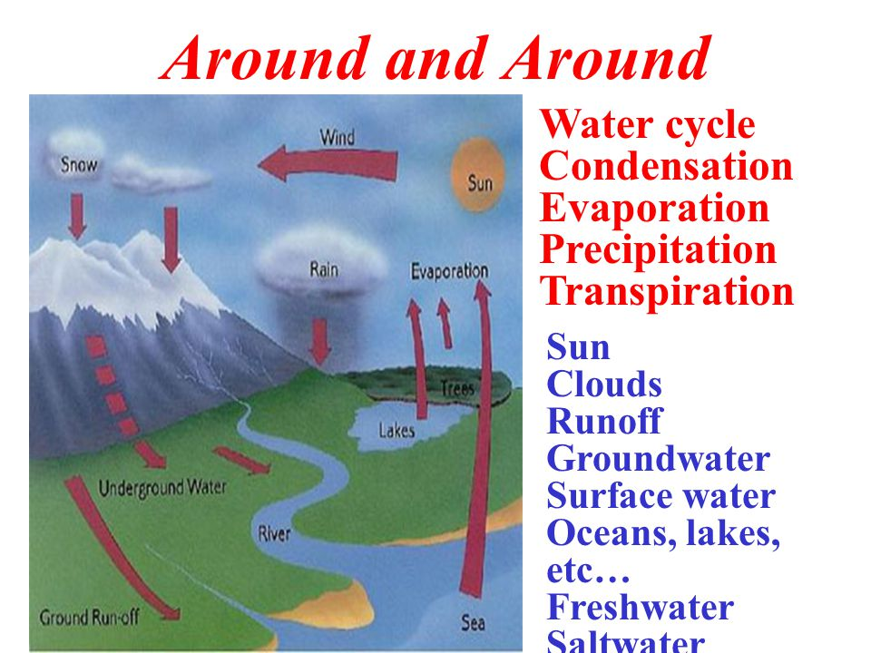 Around and Around Water cycle Condensation Evaporation Precipitation Transpiration Sun Clouds Runoff Groundwater Surface water Oceans, lakes, etc… Fre