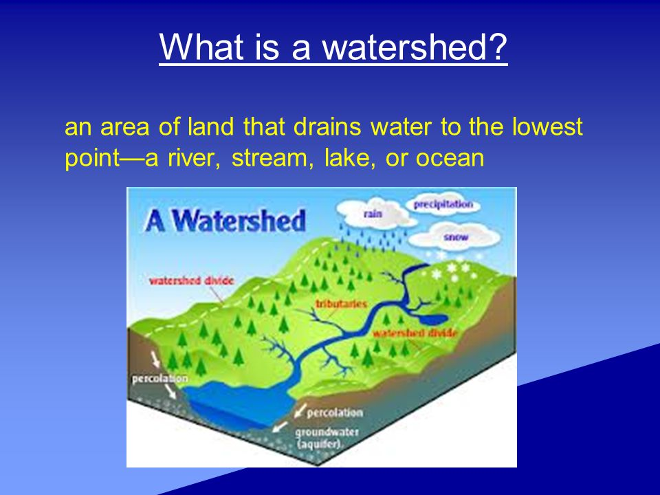 Everyone lives, works or plays in a watershed.Watersheds drain water to the lowest point.