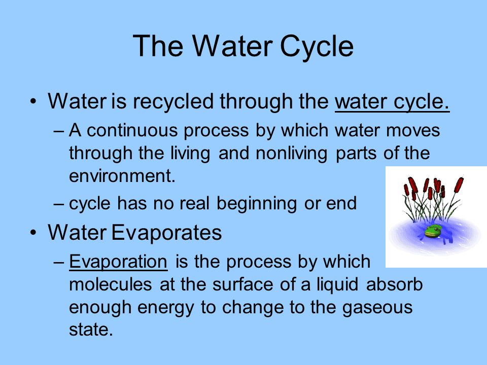 The Water Cycle Water is recycled through the water cycle. –A continuous process by which water moves through the living and nonliving parts of the en