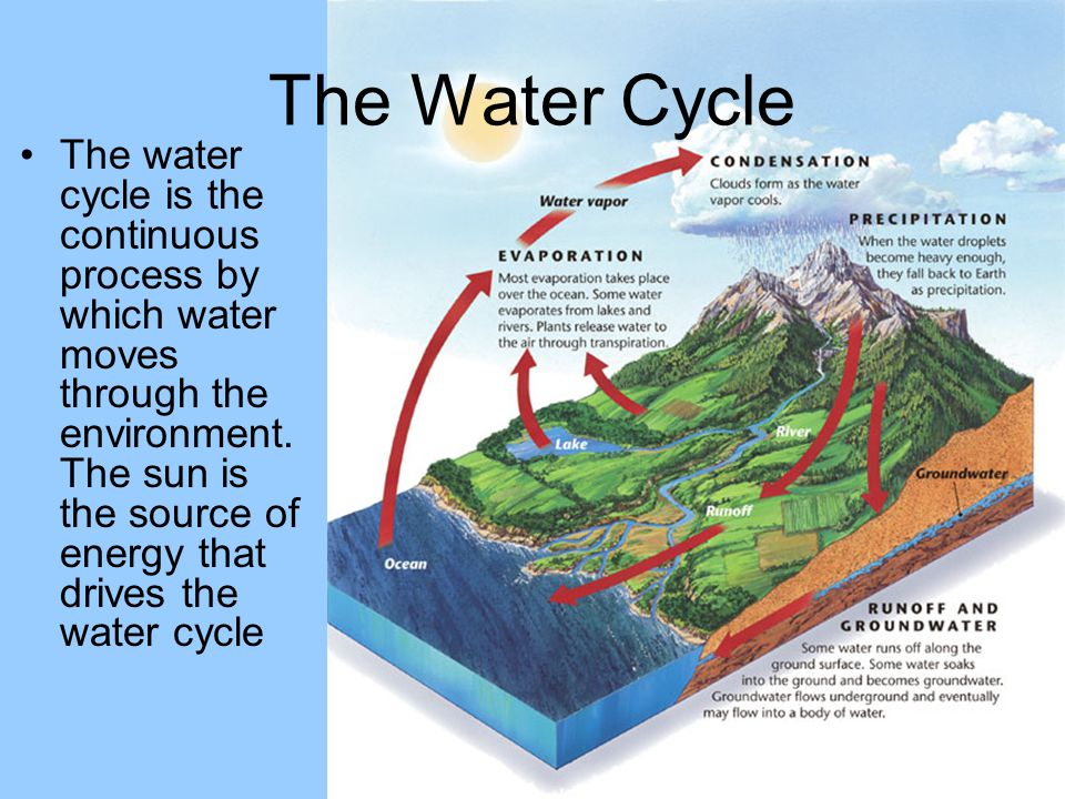 The water cycle is the continuous process by which water moves through the environment. The sun is the source of energy that drives the water cycle Th