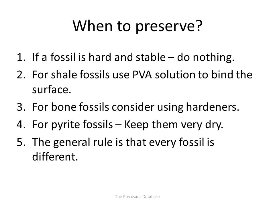 When to preserve. 1.If a fossil is hard and stable – do nothing.