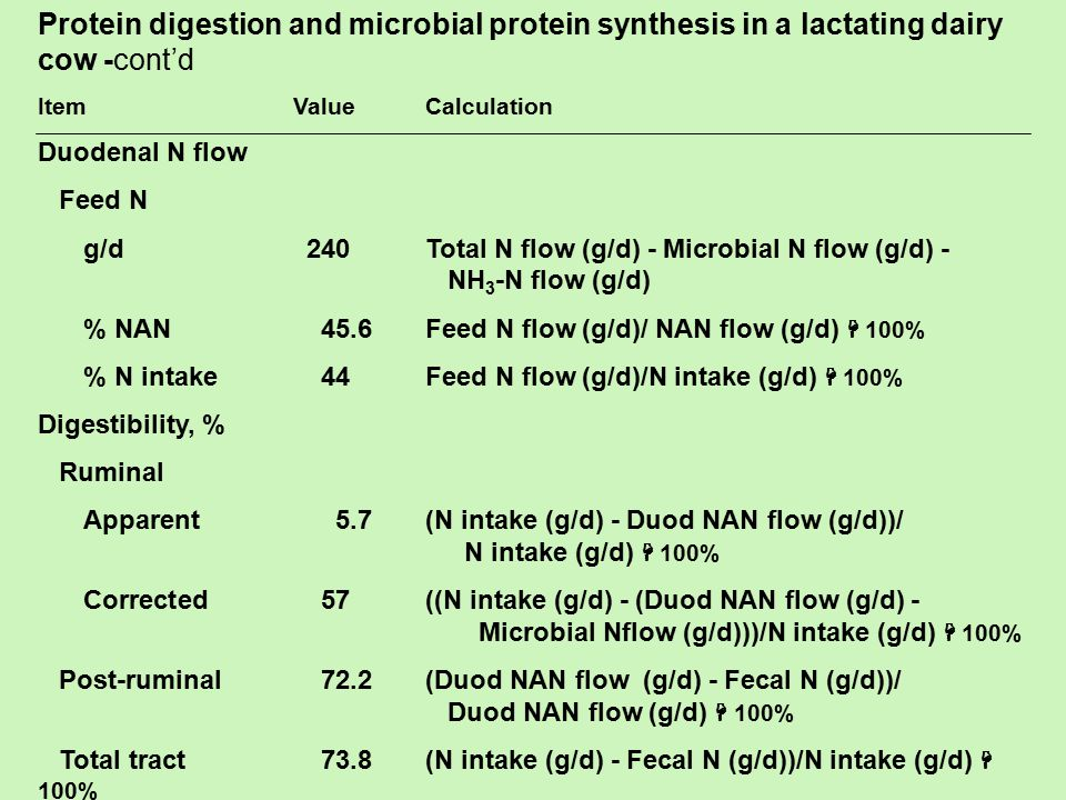 Protein digestion and microbial protein synthesis in a lactating dairy cow -cont'd Item ValueCalculation Duodenal N flow Feed N g/d240Total N flow (g/d) - Microbial N flow (g/d) - NH 3 -N flow (g/d) % NAN45.6Feed N flow (g/d)/ NAN flow (g/d)  100% % N intake44Feed N flow (g/d)/N intake (g/d)  100% Digestibility, % Ruminal Apparent5.7(N intake (g/d) - Duod NAN flow (g/d))/ N intake (g/d)  100% Corrected57((N intake (g/d) - (Duod NAN flow (g/d) - Microbial Nflow (g/d)))/N intake (g/d)  100% Post-ruminal72.2(Duod NAN flow (g/d) - Fecal N (g/d))/ Duod NAN flow (g/d)  100% Total tract73.8(N intake (g/d) - Fecal N (g/d))/N intake (g/d)  100%