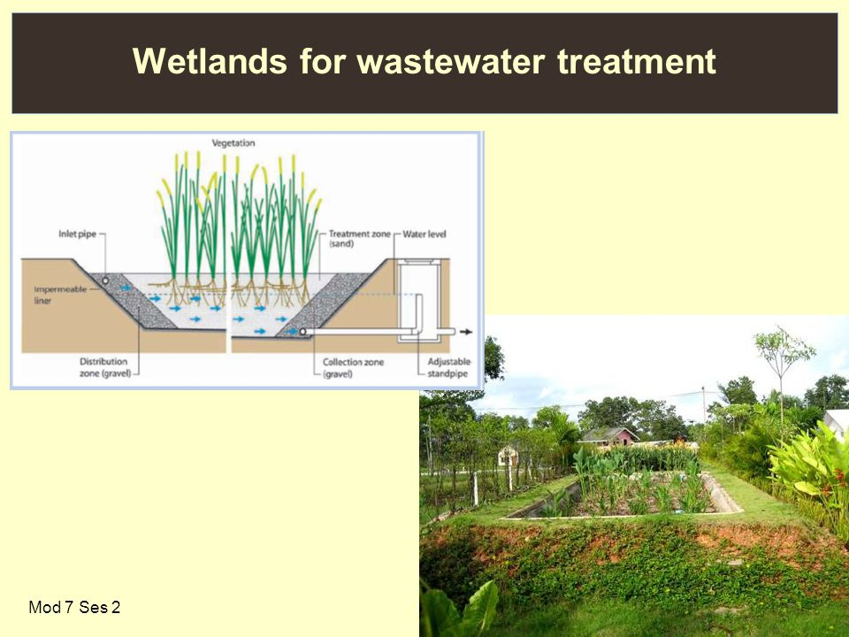 27 Wetlands for wastewater treatment Mod 7 Ses 2