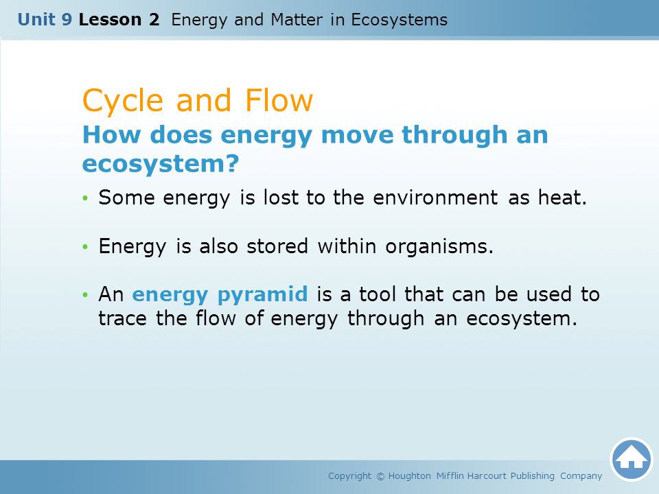 Cycle and Flow Copyright © Houghton Mifflin Harcourt Publishing Company How does energy move through an ecosystem? Some energy is lost to the environm