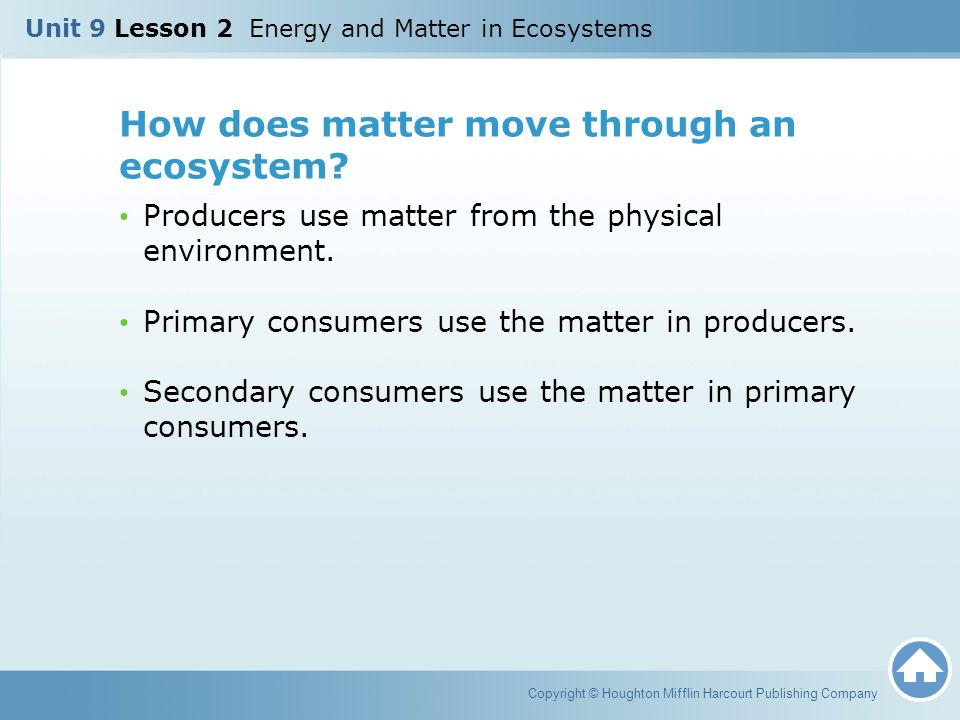 How does matter move through an ecosystem? Producers use matter from the physical environment. Primary consumers use the matter in producers. Secondar