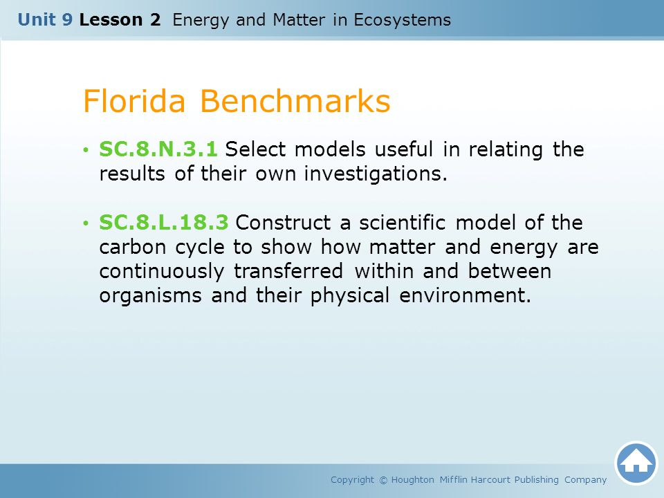 Unit 9 Lesson 2 Energy and Matter in Ecosystems Florida Benchmarks Copyright © Houghton Mifflin Harcourt Publishing Company SC.8.N.3.1 Select models u
