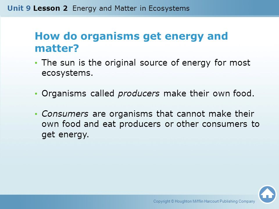 How do organisms get energy and matter? The sun is the original source of energy for most ecosystems. Organisms called producers make their own food.