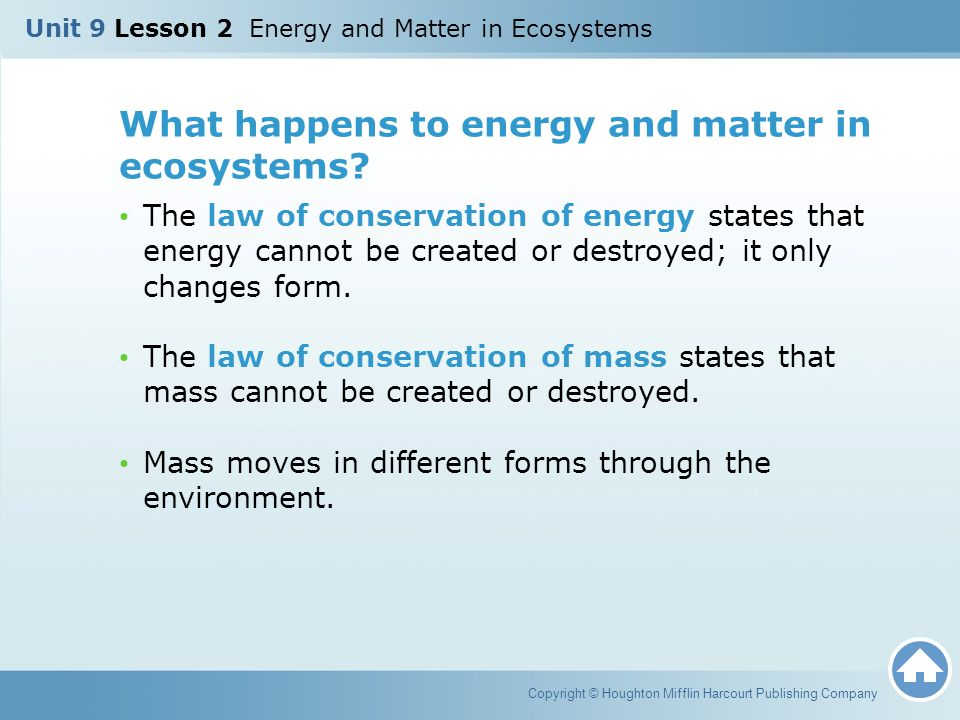What happens to energy and matter in ecosystems? The law of conservation of energy states that energy cannot be created or destroyed; it only changes