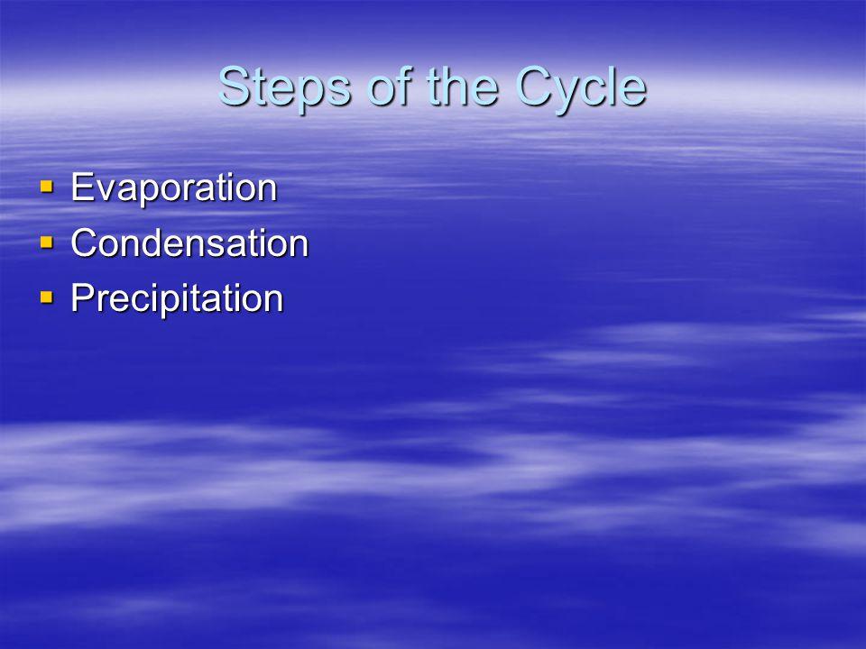 Steps of the Cycle  Evaporation  Condensation  Precipitation