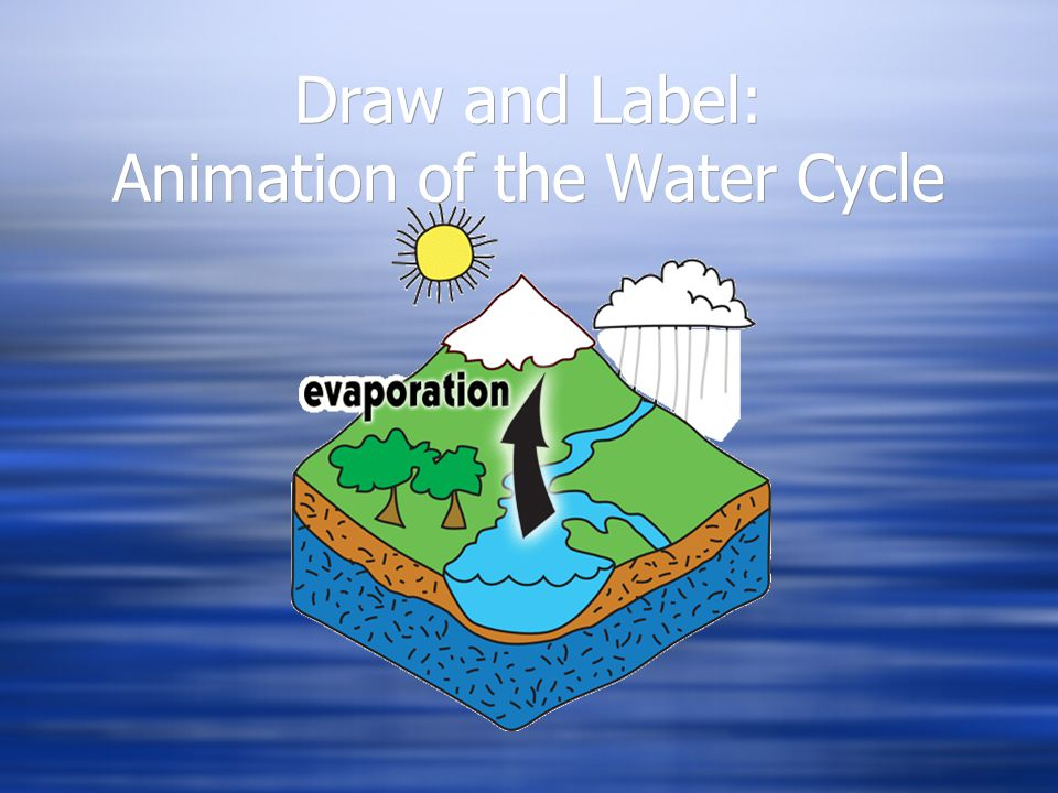 Draw and Label: Animation of the Water Cycle